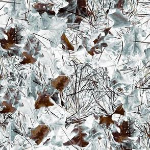 Forest Floor - Winter
