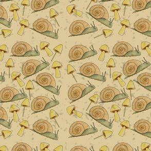 Summer Snails and Mushrooms