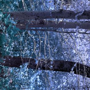 Futhark's Forest - Magic