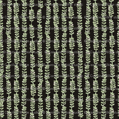 Les Petites Fleurs: Ferns – Dark