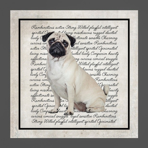 Pug Pillow/Quilt Panel