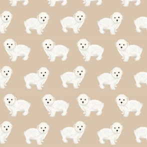 maltipoo dog fabric - cute white dog fabric, toy dog fabric, dog breeds fabric -tan