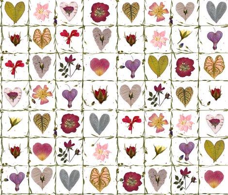 Rshape-of-a-heart-botanicals_shop_preview
