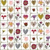 Rshape-of-a-heart-botanicals_shop_thumb