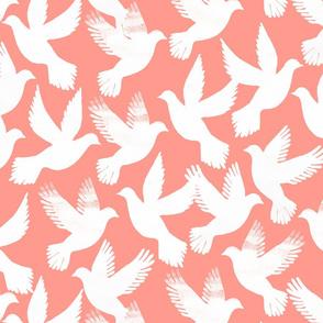 doves coral bg