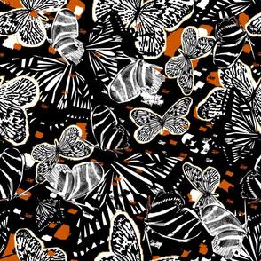 Zebra Butterflies Together