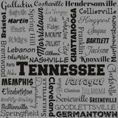 Tennessee cities, standard gray