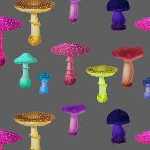 Vintage Mushroom Party