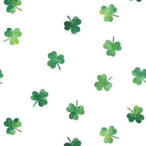 shamrocks - st patricks day