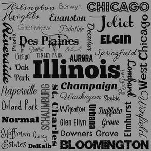 Ilinois cities, standard gray