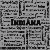 Indiana cities, standard gray