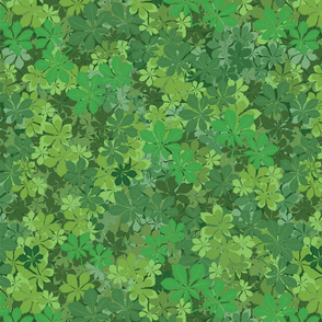 Ferns, Clovers and Leaves