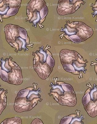 Human Hearts - I Anatomically Correctly Love You - Anatomy