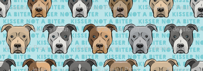 (small scale) kisser not a biter - pit bulls on blue C18BS