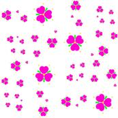 Fuchsia Hearts and Flowers
