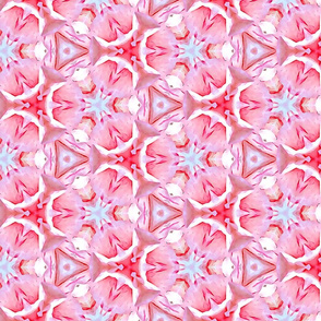 Peppermint Pink Blossoms