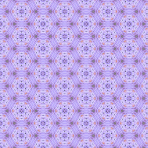 Purple and Gold Hexagons