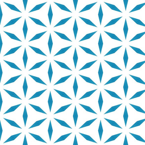 Teal Blue Star Pattern