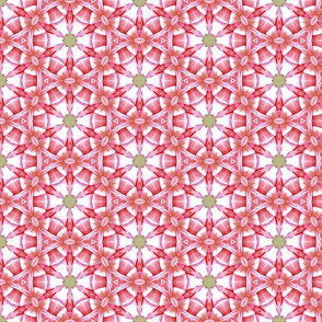 Red Spoke Pattern