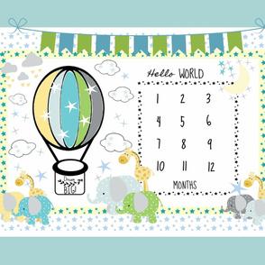 YARD 54x36 monthly milestone mint balloon elephants polka flags