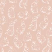Sketched White Rabbits || Ballet Pink background