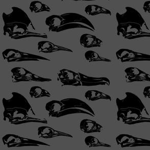 Bird skulls negative