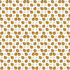 DAFFY CIRCLES orange