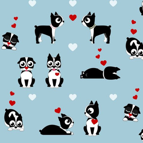 Valentine Boston Terrier