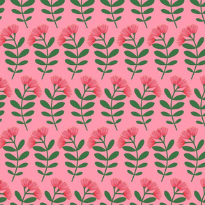 Pōhutukawa – Pink