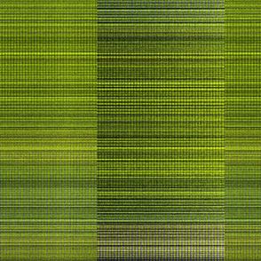 warp weft-lime_green