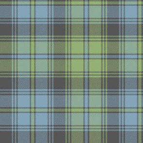 "Marquis of Lorne 1871 tartan #2, 6"" faded"