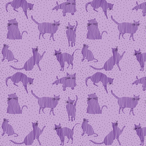 cute purple kittens