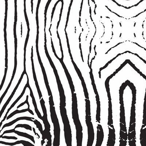 Textured zebra stripe repeat in black and white