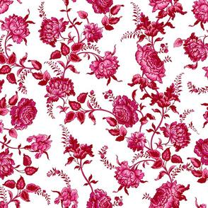 Alstan cranberry