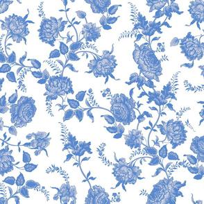 Alstan blueberry