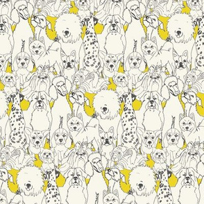 12 Pups in Yellow
