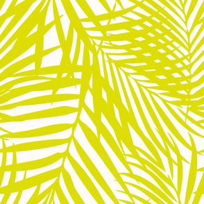 Fronds citron on white