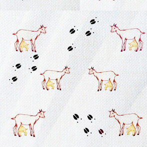 kid-ewe