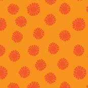 orange coral sun-01