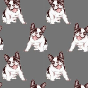 Custom Happy French Bulldog on Gray