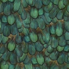 green-pheasant animal print