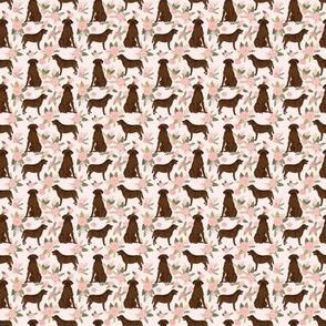 MICRO labrador retriever chocolate lab pet quilt d quilt floral coordinates dog fabric