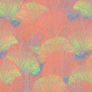 striped seafan coral