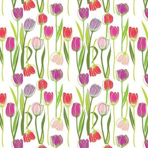 purple_tulip