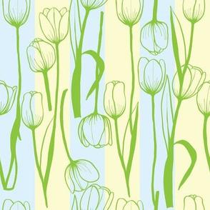 blue/cream stripe tulip