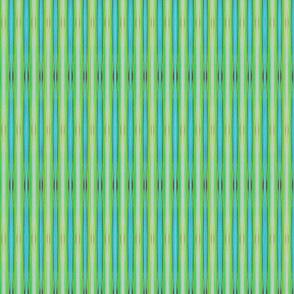 frogbelly stripe