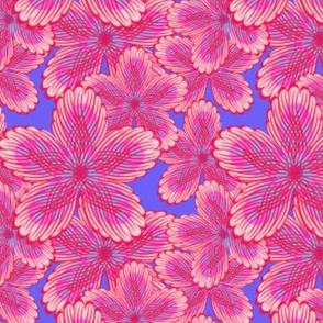 jellyfloral