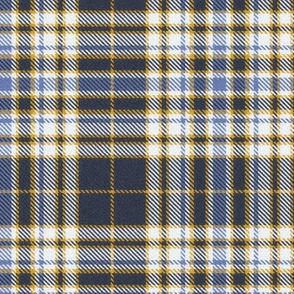 Bluegray Blue White and Gold Plaid