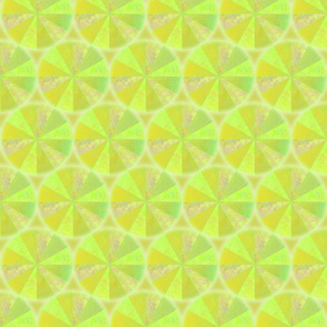 spin citrus