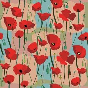 Poppys Blooming2